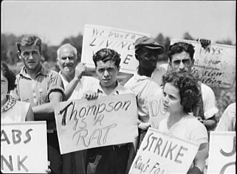A group of men and women hold signs and pose for this photograph. One sign reads Thompson is a Rat.