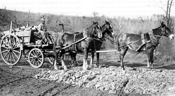 A man sits in the driver's seat of a wagon full of rocks. There are three mules harnessed to the wagon.