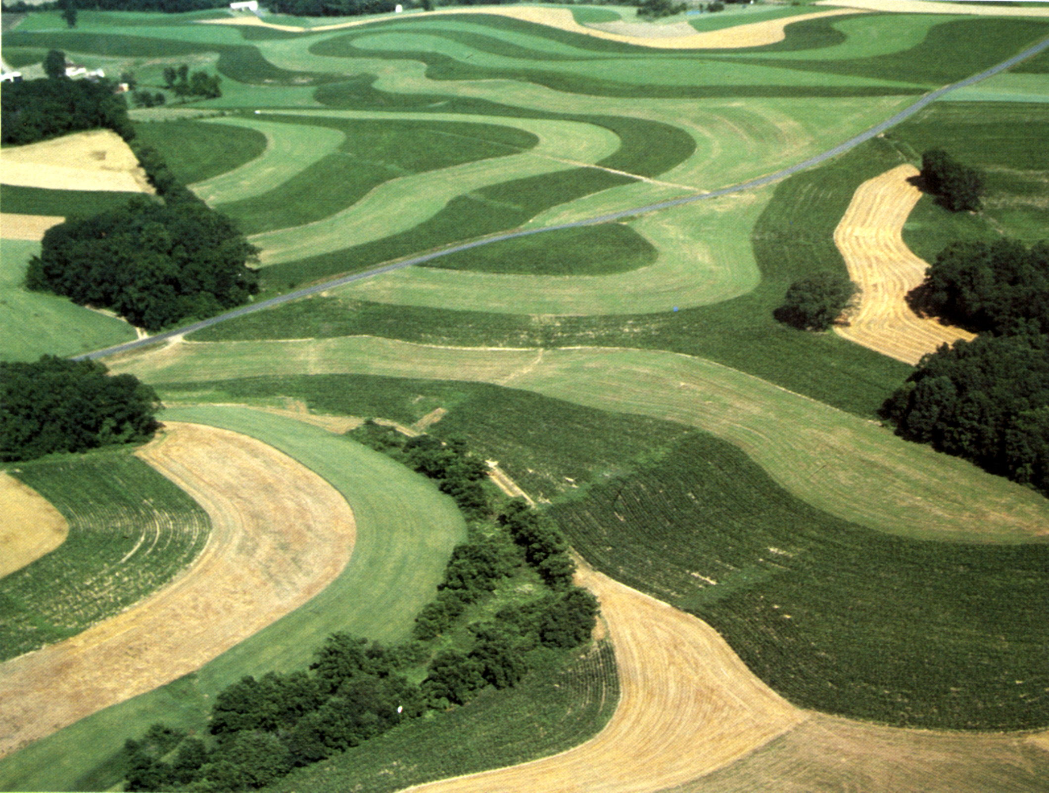 Definition: Contour Plowing is the farming practice of pl ...