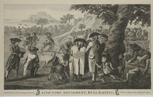 The popular amusement of bull baiting in the central part of this satire. The onlookers have the hawkers and pickpockets preying on them as the bull attacks the dog.