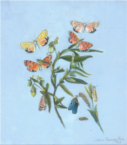 Beautiful watercolor on paper of butterflies and flowers, against a blue background.