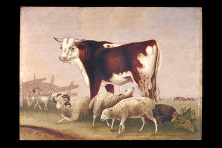 Oil on canvas of a Bull surrounded by sheep.