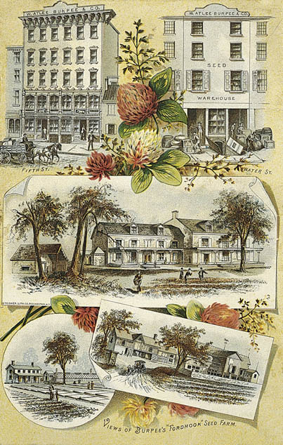 Burpee Seed Catalogue, 1890 back cover Philadelphia warehouses and the Fordhook Farm outside of Doylestown, Pennsylvania.