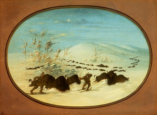 In this painting, Catlin showed how Plains Indians hunted buffalo in the winter by driving them into snow banks.  Note the snowshoes worn by the Indian hunters.