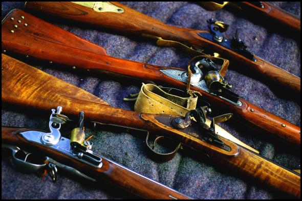 A color picture of five rifles, at carrying angles to highlight different sections of the Pennsylvania Rifle.