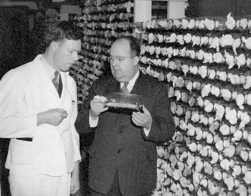 Raymond Rettew (on right) with Dr. Desmond Biel, holding sterile culture with seed spores of Penicillin Notatum, circa 1945.